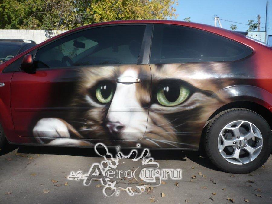Аэрография Кошки на машине